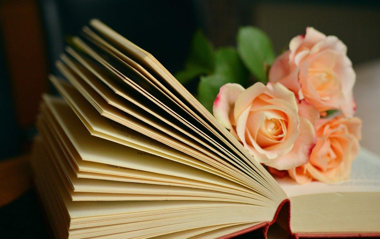 Geöffnetes Buch mit lachsfarbenen Rosen darin